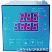 PHG-2091A型工业PH计