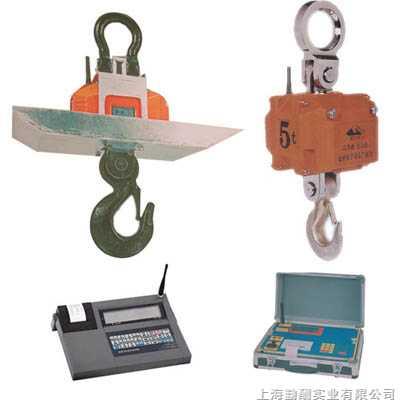 希望是生命的源泉,上海电子吊称,上海行车吊称,1吨吊称k