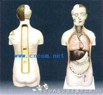 呼气式酒精检测仪