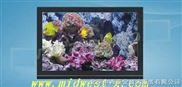 40英寸专业级LCD监视器