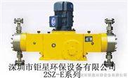 深圳2SZ-E顺子SZ柱塞计量泵