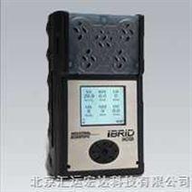 北京MX6多气体检测仪