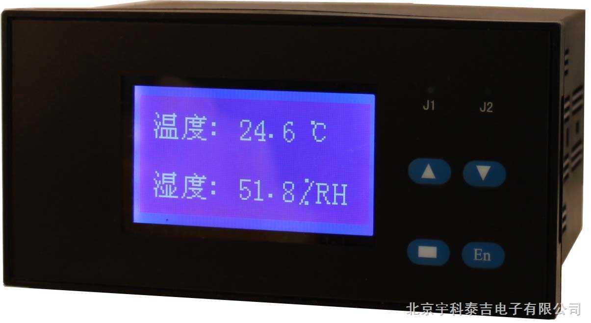 智能双通道液晶温湿度显示调节仪