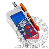 烟道气氧分析仪