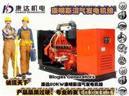Cummins Biogas generator-陕西沼气发电机组、陕西养殖场沼气发电机组、陕西沼气脱硫设备