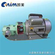 WCB-微型齿轮油泵