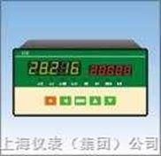 增强型单输入通道数字式智能仪表XSE