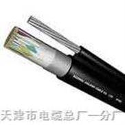 ZARVV RVVZ通信电源用阻燃软电缆 -ZARVV RVVZ通信电源用阻燃软电缆