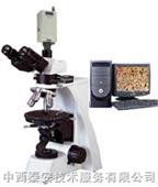 偏光显微镜