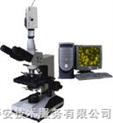 电脑型三目生物显微镜