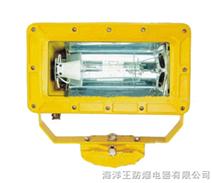 海洋王 BFC8100  防爆外场强光泛光灯 海洋王手电筒
