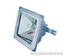 海洋王 NFC9100 防眩棚顶灯 海洋王手电筒