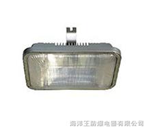 海洋王 NFC9175 长寿顶灯 海洋王手电筒