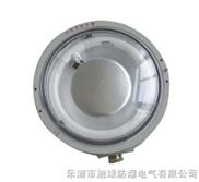 CCD96-CCD96防爆灯 CCd96系列防爆免维护节能照明灯 CCD96防爆节能荧光灯