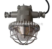 DGS礦用LED防爆燈