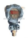 PTS46V-PTS46V工业数显微压力变送器