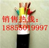 BPYJVP变频电缆|BPVVP电缆国标|变频电缆生产厂家|BPYJVP电缆BPYJVP变频电缆|BPVVP电缆国标|变频电缆生产厂家|BPYJVP电缆