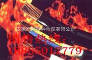 耐火电力电缆NH-VV3*120-耐火电力电缆NH-VV3*120