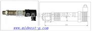 高温压力传感器/变送器 型号:ZX01-PY206H库号:M401009