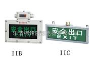 BYY系列防爆标志灯(IIB)