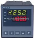 数显仪表XST/D-F2RT2A0B0S0V0