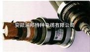 金属层屏蔽电力电缆