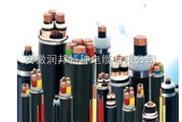 ZR0.6/1KV交联聚乙烯绝缘电力电缆