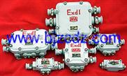 BY.12-127系列-防爆接线盒
