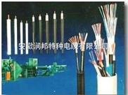 耐火电力电缆NH-FV系列