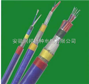 硅橡胶 耐高温控制电缆