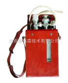 甲烷标准气样校准仪 现货
