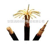 氟塑料绝缘电力电缆