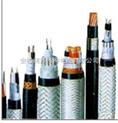 阻燃耐火0.6/1KV聚氯乙烯绝缘电力电缆