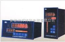 MXZ-6000-Y系列液位控制仪表-S