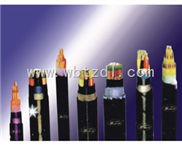 VV22铠装电力电缆