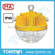 DGS45/127L(A) 礦用隔爆型LED巷道燈