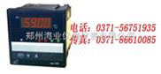智能PID调节器WP-D805-010-23-HL