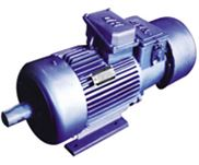 YZRW、YZRDW、YZRSW涡流制动电机,VZ涡流制动器