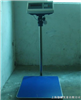 上海电子秤•上海250kg电子秤•上海250kg防水电子秤