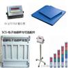 SCS电子磅秤-不锈钢地磅秤