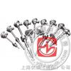 WZP2-74S WZPK2-266SA 化工专用热电阻