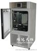 YP-250SDP强光药品综合稳定性实验箱