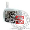 SM300 温度LCD显示记录仪