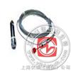 BJCS400 PH检测电极