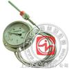 WTZ/WTQ-280 径向软管连接全钢温度计