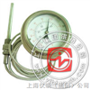 WTZ/WTQ-280轴向全钢软管连接温度计