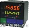 液位/容量显示控制仪NWP-LED-HK