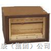 大型记录仪EA/J□00-01