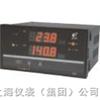 双回路数字光柱显示控制仪HR-WP