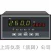 PID控制仪XSC